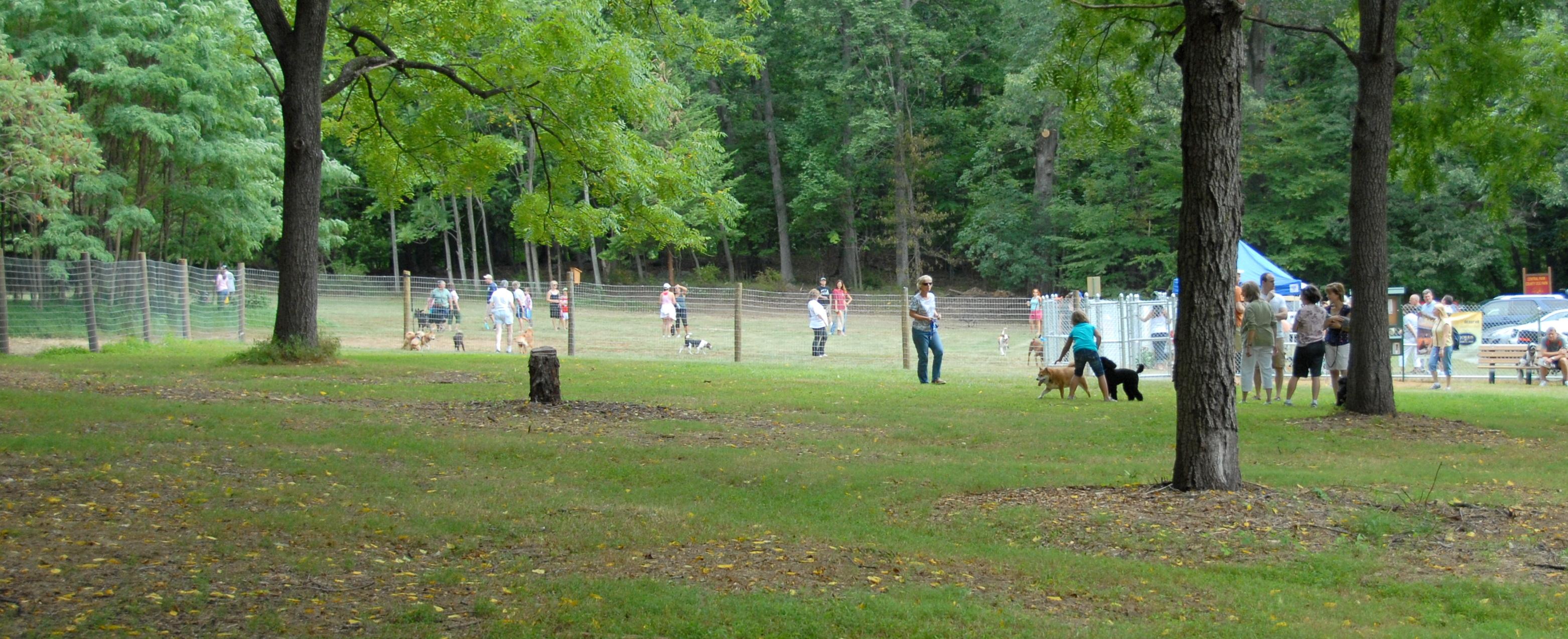 Morristown Nj Dog Parks
